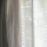 なんか変な視線感じると思ってカーテンの方見たら恐怖で一瞬固まった