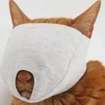 猫の爪を切るのに暴れて大変だなーと思って検索してたらマスク売ってた
