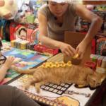 台湾の屋台でやってたルールの分からないゲーム