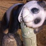 みんなの遠足ログ♫ 【川口運動公園】竹を噛み砕いている外見がとてもホラーなパンダ。