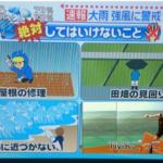台風は、TMRごっこをする日ではありません。