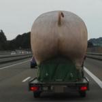 ドイツのアウトバーン走ってたら、突如巨大な豚のお尻が見えてきて驚いた。しかもよく見たらビーガン(純粋菜食主義)生活をオススメする広告だった。