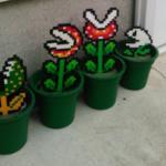 友達の家の鉢植えが何かおかしい