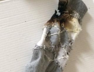 全然靴下が乾かなかった私が寝ぼけた頭で「はっ電子レンジでチンしたら速攻乾くのでは!!!?!?!?!」とおもって5分チンした結果がこれです