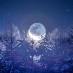 地球照を抱いた月が昇ると、月光に照らされた山の木々が、氷のお城のように輝いていました。