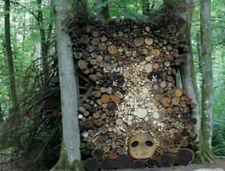 乙事主様かと思ったら伐採木だった
