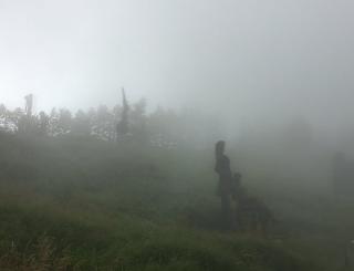 俺も長野の高原の美術館で体験したよ サイレントヒル  美術品が怖すぎてマジモンだった