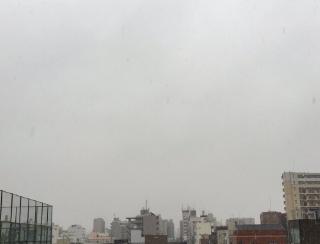 出勤した旦那から「すごい雪で完全にスカイツリーが消えた…」とあって、またまた〜と思いながら画像を見たら、完全にマジシャンが消したみたいになっていた。