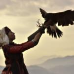 作中にもある通り、乙嫁語りの舞台・中央アジアには鷹匠の文化があります。その風景を写真集に入れたくて、佐賀へ撮影にいってきました。