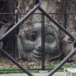 散歩中にトーマスの墓場を見つけてしまった…