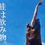 鮭は飲み物。  このポスターを見て、この水族館に来ることを決めました。