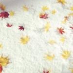 冬が早過ぎて紅葉が散るから和菓子みたい🍁珍しい