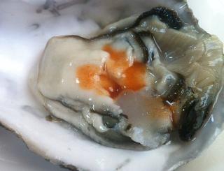 生牡蠣はタバスコに限る。元々タバスコは生牡蠣を食べるために作られたソースなので当たり前なのだが、地味に知らない人もいるのでゼヒ試してほしい。