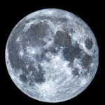 空をごらんください。東に高く今年最後の満月が昇りました。