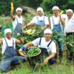 嘘みたいな本当の話。 TOKIOが楽しそうに農業やってるから俺も実家の農家を継いだという友人。 地元の親友に2人もいる。