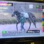 中山競馬場に到着してグリーンチャンネル見たら、中京すごい雪(゚ω゚)
