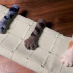 猫の手も借りたい多忙な紳士のためのネクタイピンができました。裏側は作者の必死さがにじみ出る仕上がりとなっていますね。