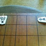 今日、駒の動かし方を教わった息子(6歳)の王手です。
