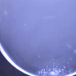 氷点下20度を下回る極寒の北海道で撮影されたシャボン玉が凍っていく様子です。少しずつ結晶が広がっていく様子をご覧下さい。