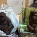友人「何故バレンタインにゴリラとチンパンジーを交換しなければならないのか」