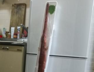 冷蔵庫に入らないやばい(やばい)