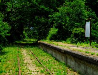 廃線:倉吉線 竹林を抜ける古びた線路。本当に幻想的で違う世界に居るみたいだった。