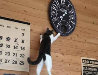 最近、リビングの時計の時間が直ぐおかしくなっていたんです…
