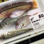 何かわからない魚がスーパーでまとめて叩き売りされる島、それが佐渡……