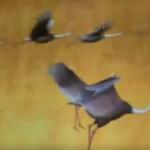 東京国立博物館の屏風遊び!!ブースに居る人数分だけ鶴がくるよ!!驚かすと逃げるよ!!