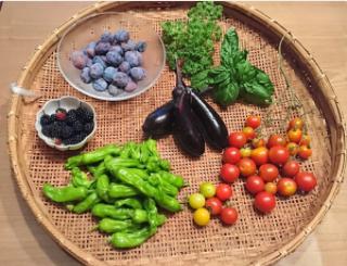 母が嬉しそうに庭でつくった野菜を見せてきたんだけど