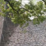 崩落していた熊本城の北十八間櫓の石垣。