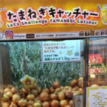 なにをトチ狂ったか、淡路島には玉ねぎをとるUFOキャッチャーがある。