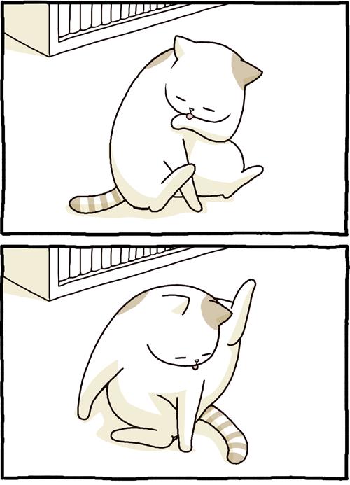 日本には「猫の手も借りたい」なんて言葉もありますが、このたび猫に手を貸しました。