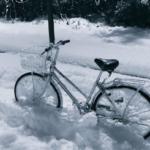 自転車押して帰ったら前輪がカッコよくなってた