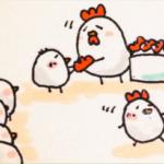 トサカを付ける新成鶏たち
